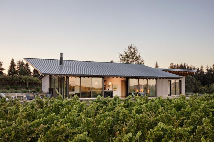 oregon wines essay