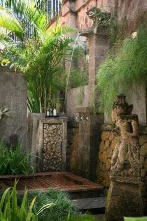 15 лучших тропических душей под открытым небом