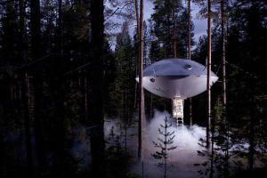 ТОП 25 самых замечательных домиков на дереве