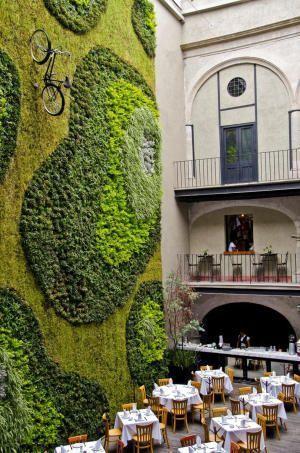 Вертикальные сады мира: ТОП-10