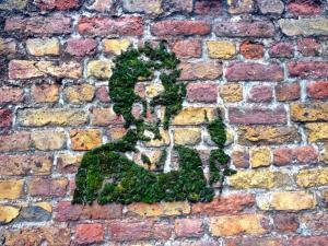 Зеленый стрит-арт: как сделать граффити из мха