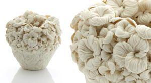 Флористическая керамика от Хитоми Хосоно